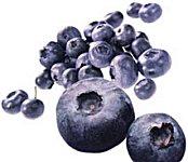 Like mye omega-3 i blåbær som i laks