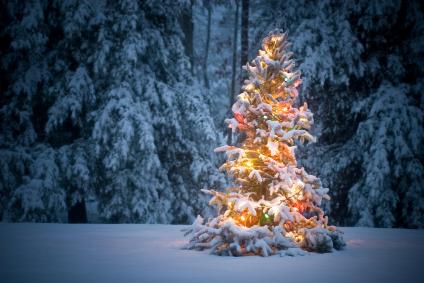 God jul & Godt nytt år.